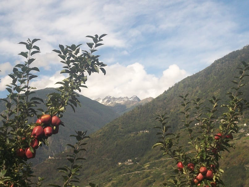 In ostello per un weekend in Valtellina