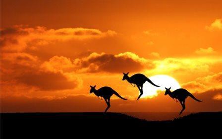 Corsi d'inglese nel mondo: volate in Australia per un viaggio studio da sogno