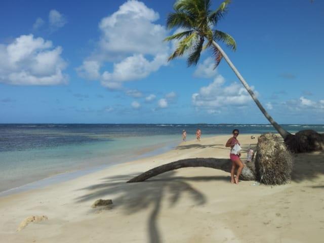 Le spiagge di Las Terrenas, un paradiso dominicano ancora da scoprire